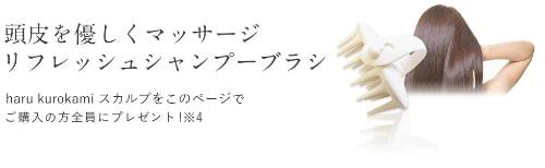 haru 黒髪スカルプ・プロ特典シャンプーブラシ